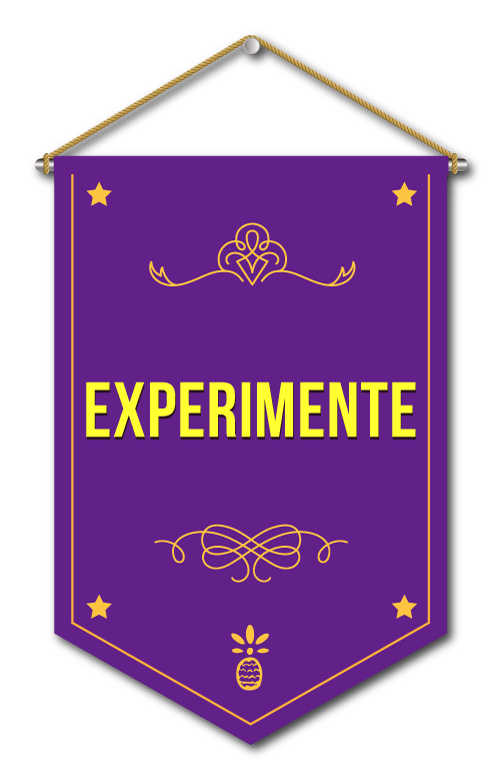 Experimentar